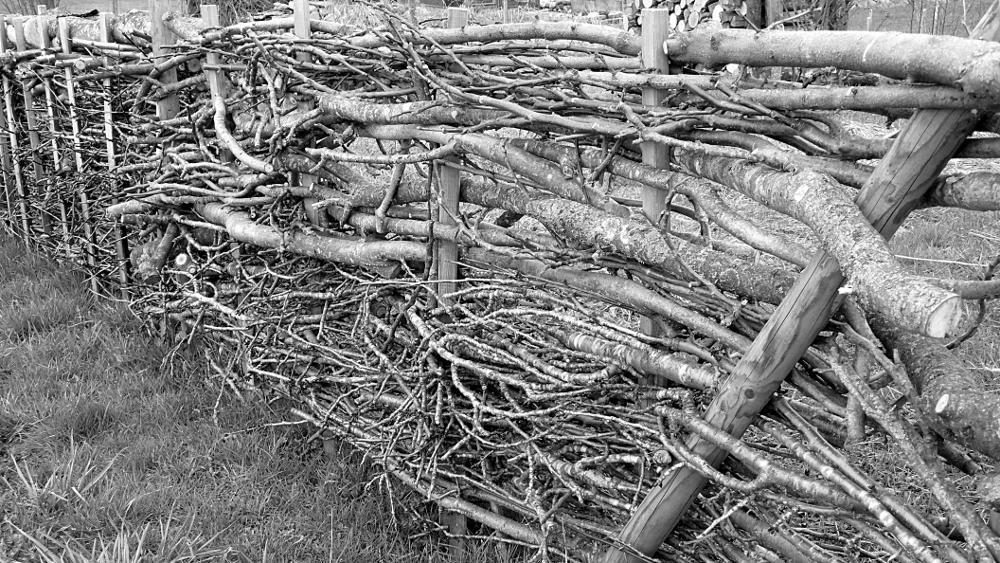 Fence – Panasonic DMC-LX2; Developed with GIMP